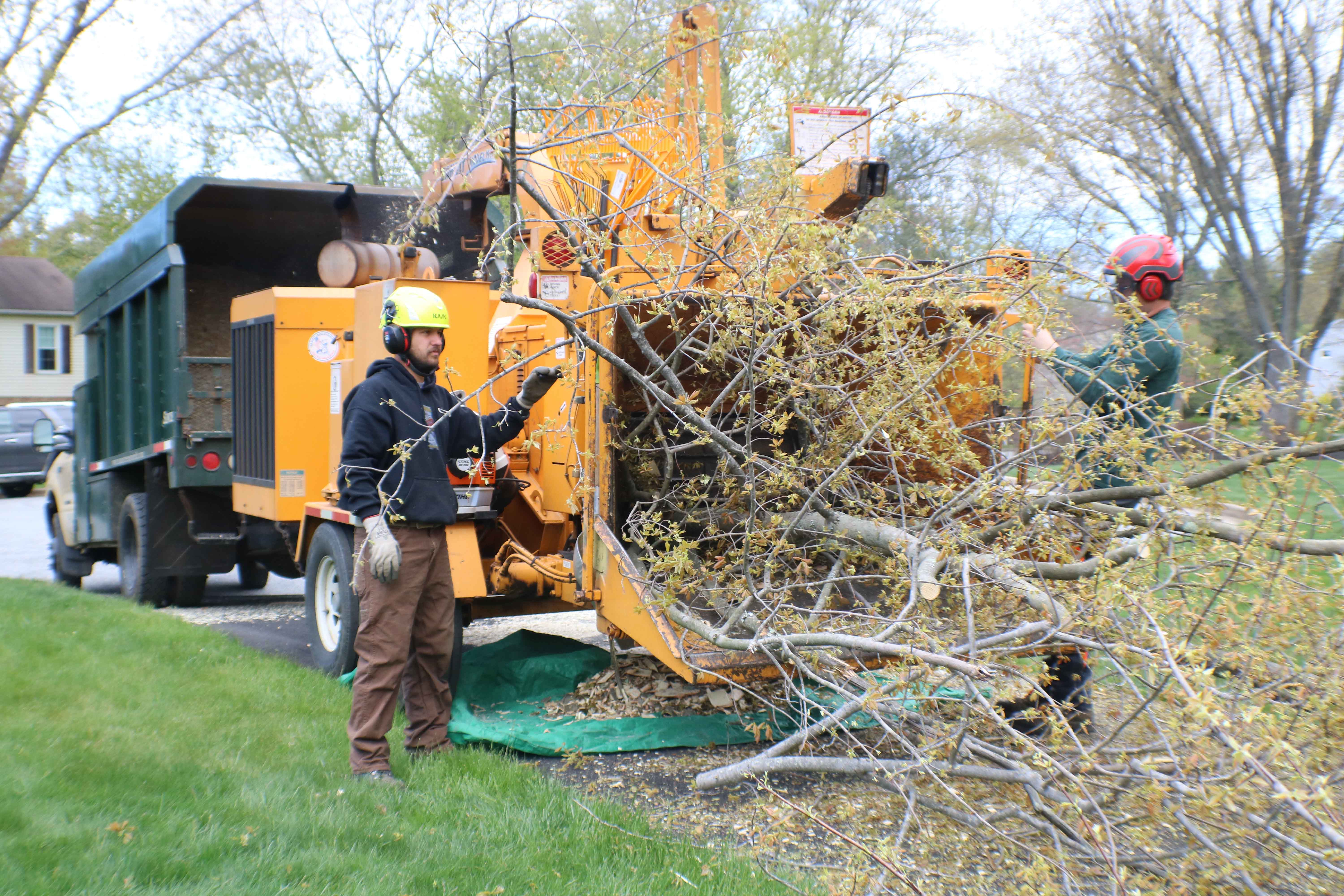 chipping limbs and branches with the chipper
