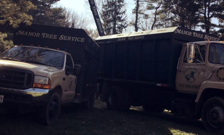 Manor Tree Service trucks