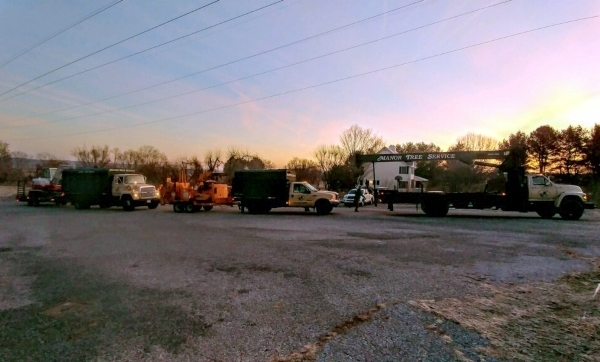 Manor Tree Service truck at sunrise