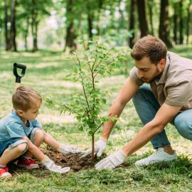 Father and son planting tree in yard in summer. | Glen Arm, MD