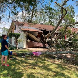 Preparing Your Trees for Hurricanes